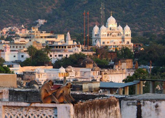 curiozitati despre india