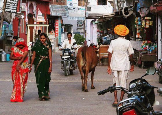 cultura si civilizatia indiana, plina de paradoxuri si contraste