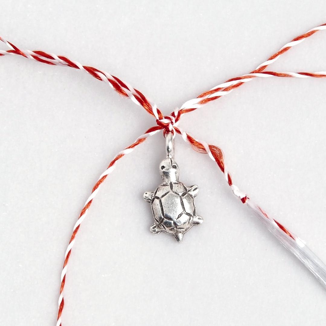 Mărțișor broscuță țestoasă din argint